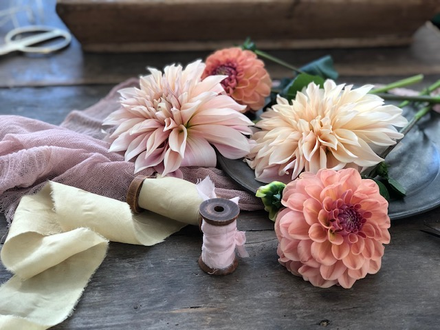 Learning to dye with dahlias